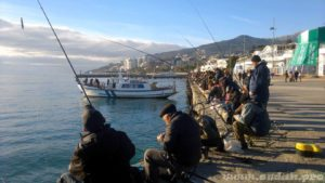 С 1 ноября в Ялте запретили ловить рыбу с набережной